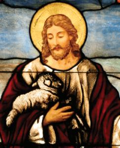 good_shepherd2-1